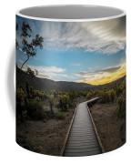 Cholla Cactus Garden, Joshua Tree National Park, Ca Coffee Mug