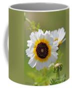 Chrysanthemum Named Polar Star Coffee Mug