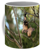Coffee Brown Pods Coffee Mug