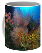 Colorful Assorted Sea Fans And Soft Coffee Mug