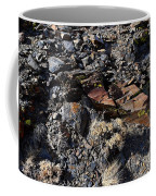 Colorful Lichens Growing On Rocks Along Monument Ridge, In The Eastern Sierra Nevadas Coffee Mug