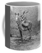 Comic Criminal Riding A Zebra Coffee Mug