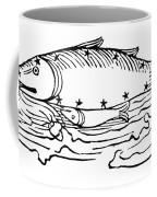 Constellation: Pisces Coffee Mug