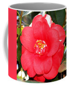 Coral Camellia At Pilgrim Place In Claremont-california  Coffee Mug