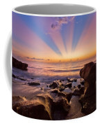 Coral Cove Coffee Mug