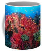 Coral Reef Scene Coffee Mug