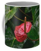 Corazon Chino Coffee Mug