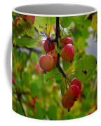 Crab Apples Coffee Mug