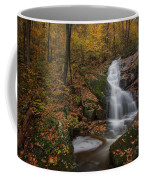 Crabtree Falls Coffee Mug