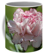 Creamy White With Red Picotee Carnation Coffee Mug