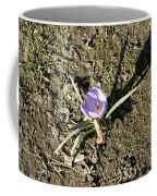 Crocus 1 Coffee Mug