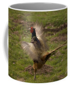 Crowing Pheasant Coffee Mug