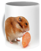 Curious Hamster 1 Coffee Mug