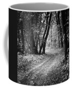 Curving Trail Entering Deciduous Forest Coffee Mug