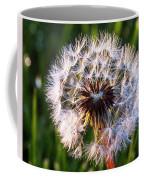 Dandelion In Nature Coffee Mug