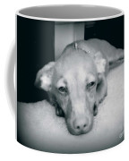 Day Dreaming Doxie Coffee Mug
