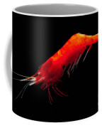 Deep Water Shrimp Coffee Mug