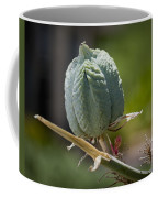 Desert Seed Pod 1 Coffee Mug