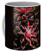 Desert Wildflower Coffee Mug