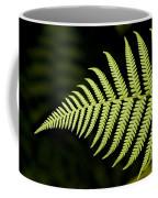 Detail Of Asian Rain Forest Ferns Coffee Mug