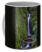 Dollar Glen In Clackmannanshire Coffee Mug