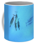 Dolphins At Rest Coffee Mug