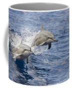 Dolphins Leaping Coffee Mug