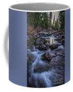 Down River Coffee Mug