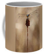 Dragonfly On Reed Coffee Mug