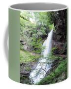 Dry Falls Coffee Mug