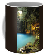 Dzitnup Natural Well Coffee Mug