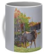 Elk Country Evening Coffee Mug