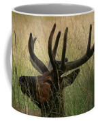 Resting Elk Coffee Mug