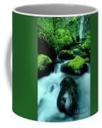 Elowah Falls Columbia River Gorge National Scenic Area Oregon Coffee Mug