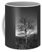 Embrace The Sky Coffee Mug
