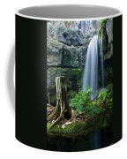 Enchanted Waterfall Coffee Mug