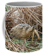 European Bittern Coffee Mug