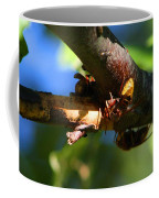 European Hornets Coffee Mug