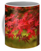 Fall Color Maple Leaves At The Forest In Aomori, Japan Coffee Mug