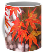 Fall Color Maple Leaves At The Forest In Kochi, Japan Coffee Mug