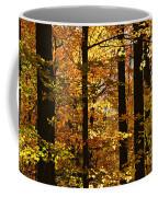 Fall Forest Coffee Mug by Elena Elisseeva