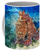 Fiji, Day Octopus Coffee Mug
