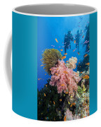Fiji Underwater Coffee Mug