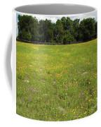 Florida - Wildflowers Coffee Mug