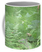 Fluffy Ferns Coffee Mug