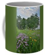 Foggy Morning At Glacial Park Coffee Mug