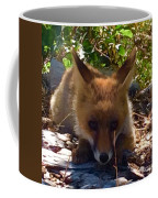 Fox Joy Coffee Mug by Colette V Hera Guggenheim