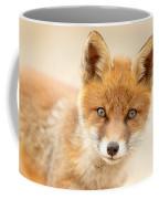 Foxy Face Coffee Mug