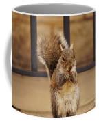 French Fry Eating Squirrel Coffee Mug