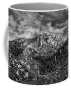 From Bog Spring Trail Coffee Mug